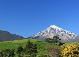 myLoKaL Taranaki new zealand